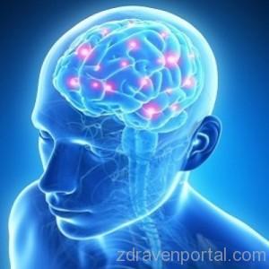 неврохирург-в-град-софия---д-р-ивайло-хаджиангелов_11996_500x500