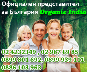 Organic Life Tree